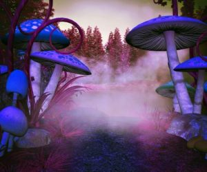 magic mushrooms, psilocybin